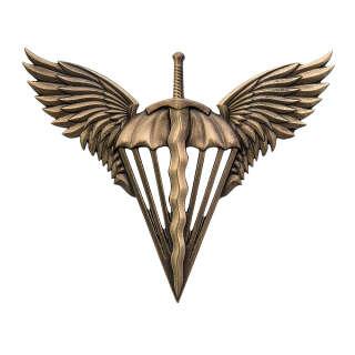 Беретний знак Десантно-Штурмові війська