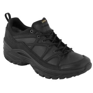 Ботинки LOWA Innox GTX LO TF LE (Black)