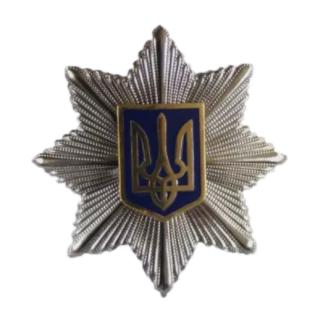 Кокарда «Национальная Полиция» (метал), Украина