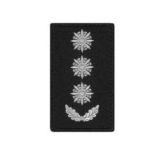 Погони Полковник Поліції (пара) на липучці чорні 8х5см