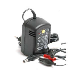 Зарядное устройство MW2168 GS