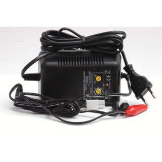 Зарядное устройство MW3168 V